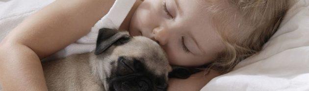 ребенок и щенок спят