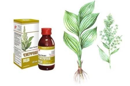 чемеричная вода в бутылочке и растение